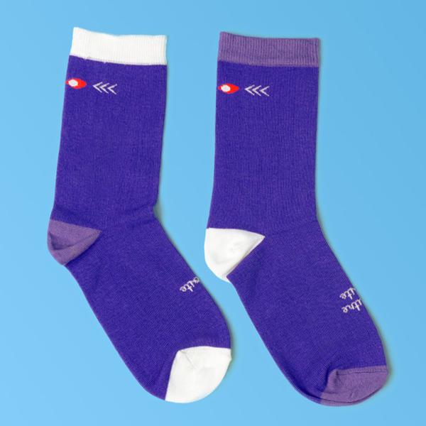 chaussettes dépareillées françaises la classique packshot